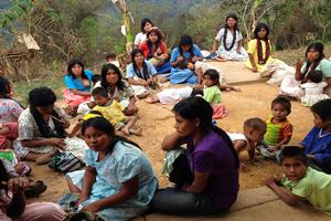 Han muerto 2 mil 36 indígenas