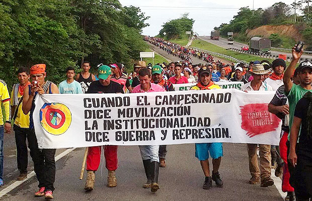 campesinos catatumbo 1
