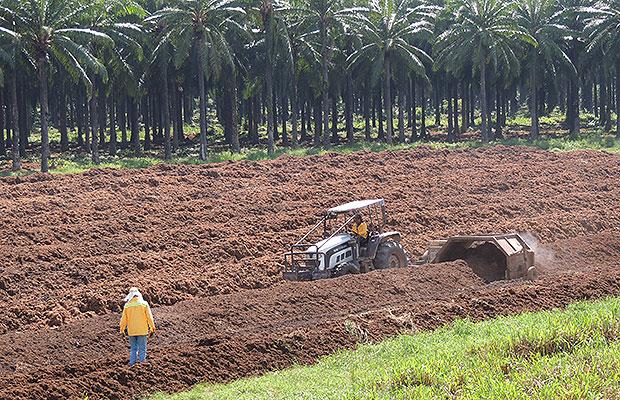 decrero ley agrario 1