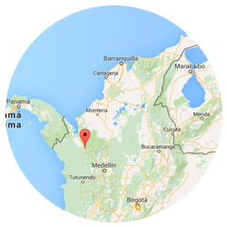 mapa mutata