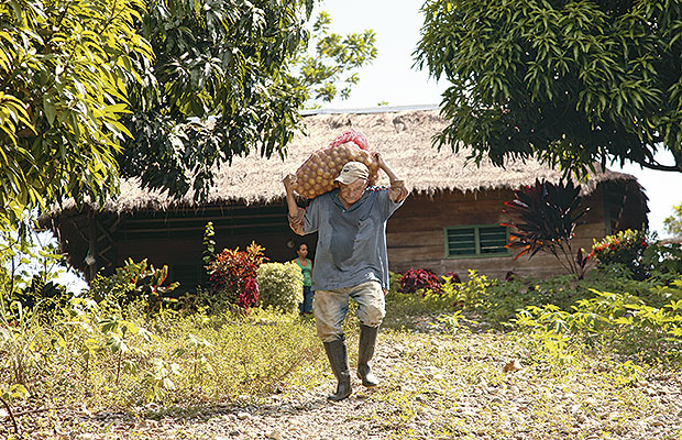 reforma agraria 1
