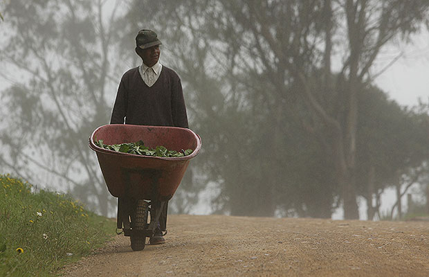 reforma agraria 2