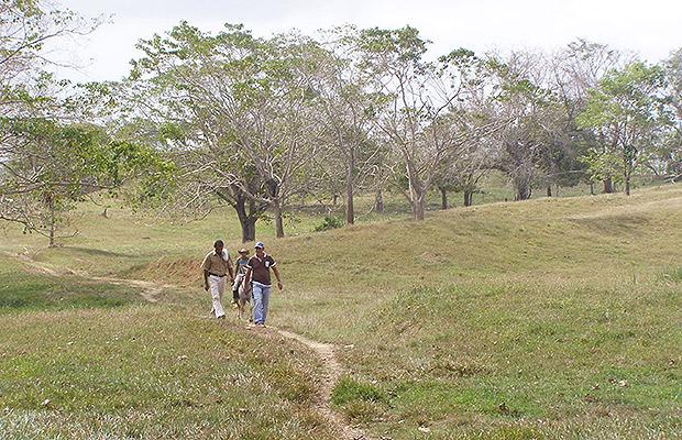 restitucion monteverde 2