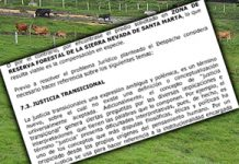 restitucion-reserva-forestal-300x200.jpg