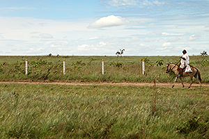 tierras-caballo-300x200.jpg