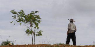 Restitución de tierras en Bella Palmira