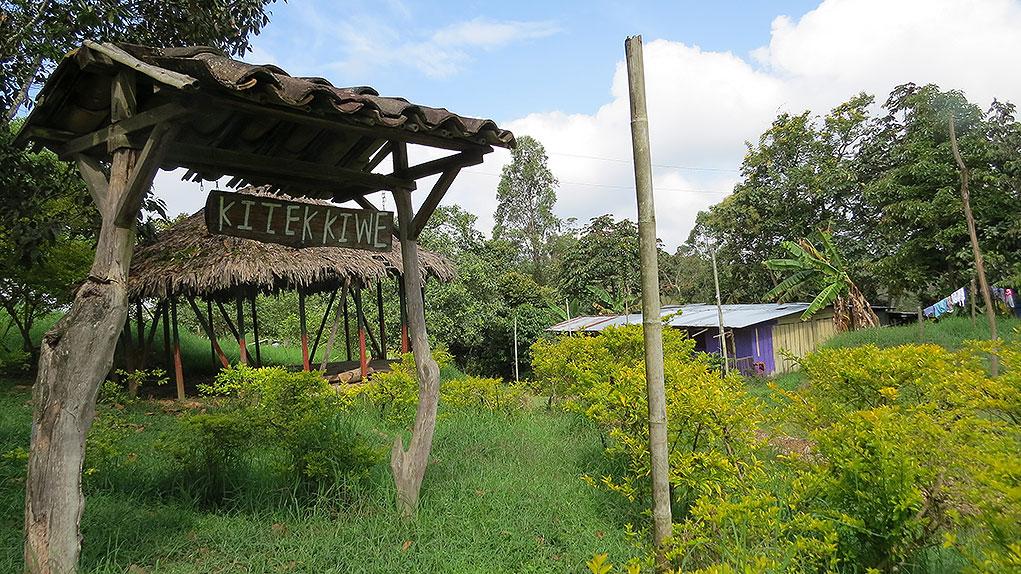 Resguardo de Kitek Kiwe