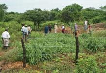 Restitución de tierras en Salaminita