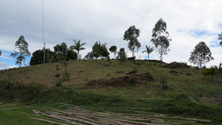 Séptimo Ritual de Memoria Histórica de Kitek Kiwe