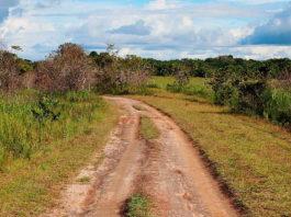 Deforestación en La Macarena, Meta