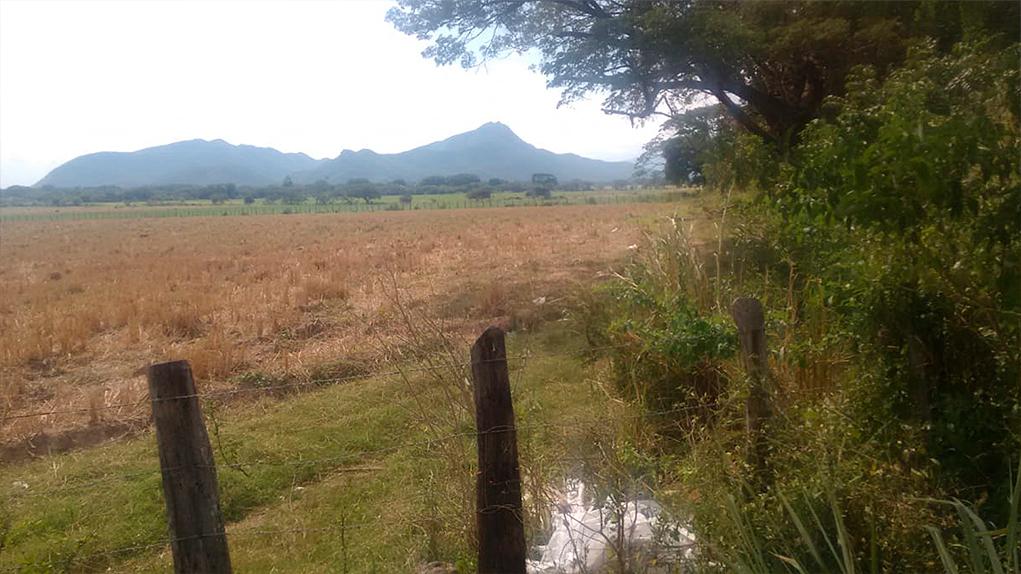 Hacienda Las Nubes, Diomedes Díaz